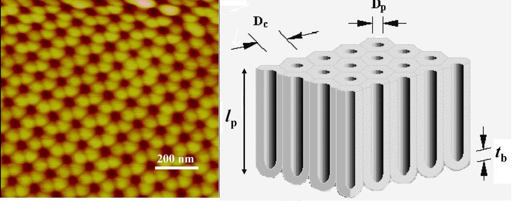 Links: AFM-Aufnahme eines Aluminiumoxid-Films. Rechts: Schematische Darstellung der selbstorganisierten Röhrenstruktur (D<sub>c</sub> = 100-120 nm, D<