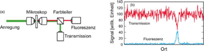 (a) Einzelne Nanoobjekte lassen sich im Mikroskop über ihre Fluoreszenz und Absorption untersuchen. (b) Während Fluoreszenz vor einem dunklen Hintergr