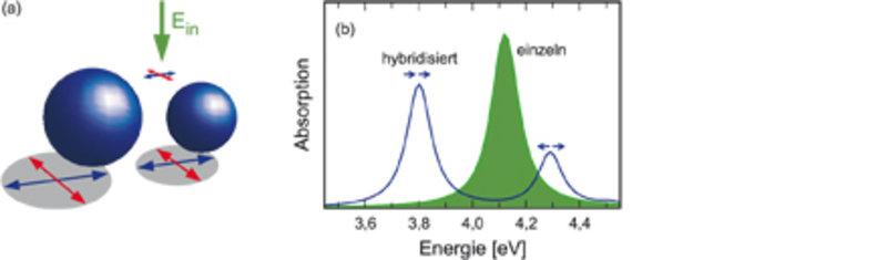 Die Plasmonen zweier benachbarter Partikel hybridisieren. Dadurch spaltet sich der Absorptionspeak auf (blauer Kurve verglichen mit dem grünen Hinterg