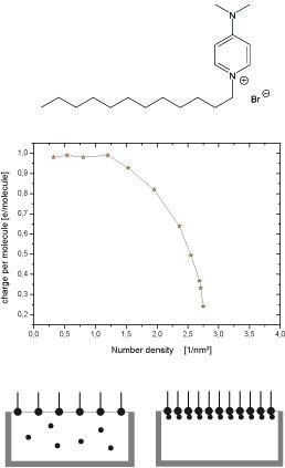 Ionenverteilung an einer geladenen Grenzfläche. Die Erhöhung der Grenzflächenladungsdichte führt zu einer Ionenkondensation.