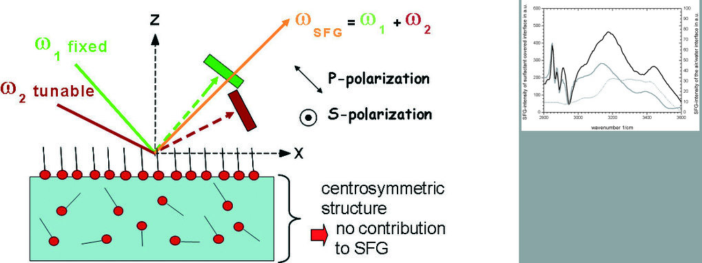 IR-VIS SFG-Spektren vor und nach der Ionenkondensation (siehe Abb. 1). Im Vergleich dazu wurde das Spektrum von reinem Wasser mit einer anderen Intens