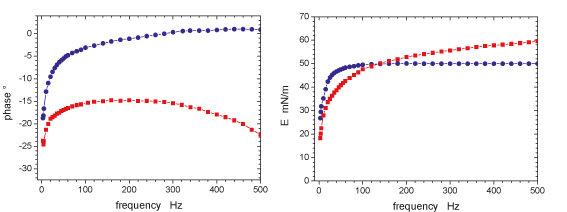 Grenzflächendilatationsmodul: Betrag und Phase als Funktion der Frequenz.