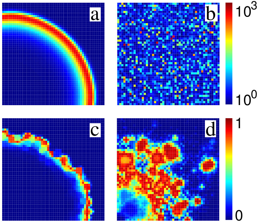 Generische Muster epidemiologischer Modelle. a:  Konventionelle, diffusive Wellenausbreitung in einer homogenen Umgebung.  b: Darstellung der räumlich