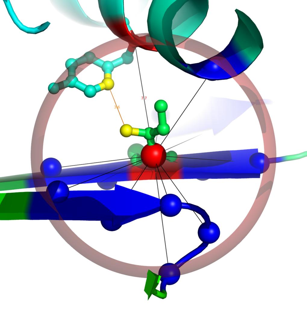 Aminosäure-Kontakte. Gezeigt ist die Aminosäure Isoleucin (ILE95) in der Umgebung einer Proteinstruktur. Die Hauptkette formt hier ein so genanntes β-