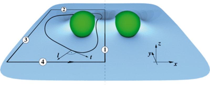 Zwei an einer Oberfläche haftende Teilchen können sich über deren Verformung gegenseitig beeinflussen. Die Kraft auf z.B. das linke Teilchen lässt sic