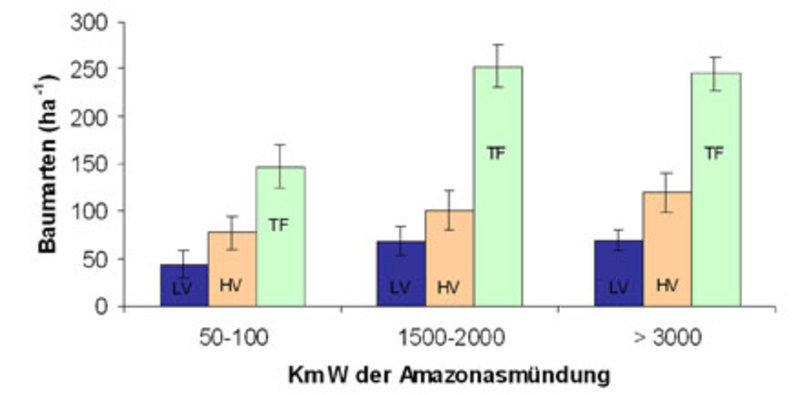 Baumartenreichtum der low várzea (LV), high várzea (HV) und nicht überschwemmter Wälder (terra firme;TF) in Ost-, Zentral-, und Westamazonien im Vergl