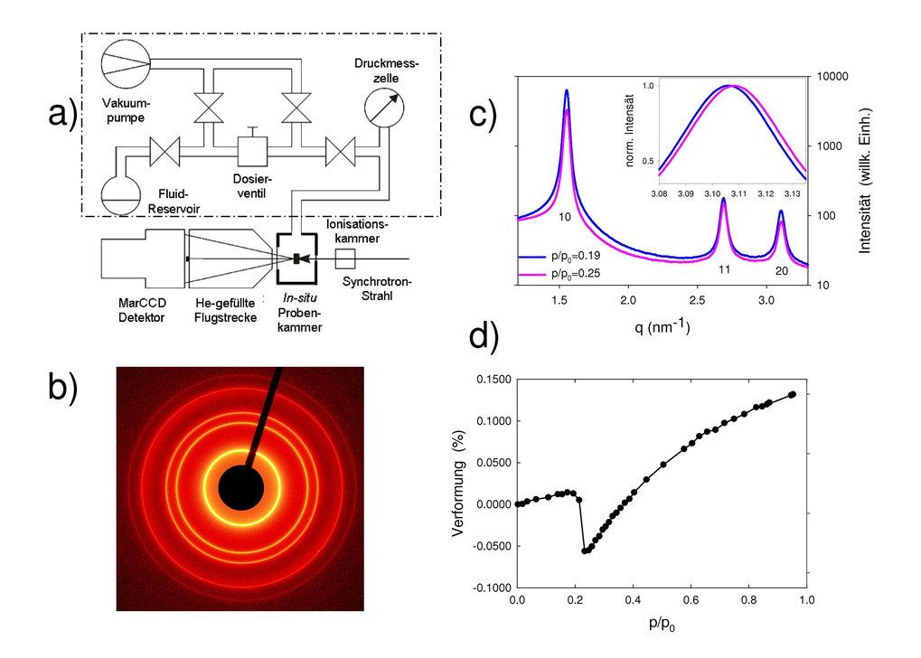 Verformung von nanoporösen Materialien durch Wechselwirkung mit Fluiden:   a) Schematischer Aufbau der in-situ Apparatur. In einer temperierten Proben