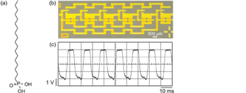 (a) Chemische Strukturformel von Oktadekylphosphonsäure. (b) Foto einer integrierten Oszillatorschaltung aus 12 organischen Dünnschichttransistoren. (