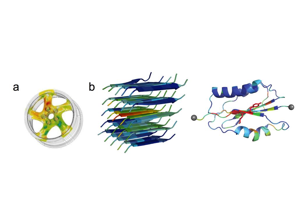 Die Kraftverteilungsanalyse ist eine etablierte Technik für das Design makroskopischer Strukturen (<b>a</b>) und wurde nun auch für molekulare, also N