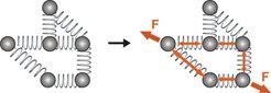 Schematische Darstellung des Prinzips der Kraftverteilung. Ein Protein, vereinfacht dargestellt, besteht aus Kugeln (Atomen oder Residuen), die mit Fe