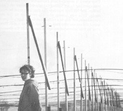 Initially thought they were signals from aliens: Jocelyn Bell, the discoverer of the pulsars.