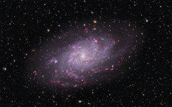 Image of the Triangulum Galaxy M33, which presents astronomers with a bird's eye view of its disk. The pink blobs are regions containing newly formed stars.