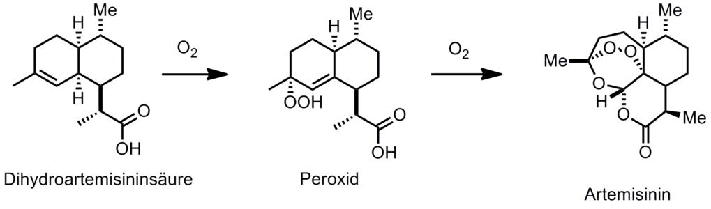 Synthese von Artemisinin aus Dihydroartemisininsäure