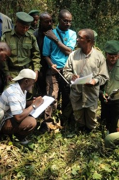 WCS researcher Deo Kujirakwinja (centre) trains census participants onhow to collect data on gorilla nests. Researchers calculate gorilla densities using nest counts and dung piles.