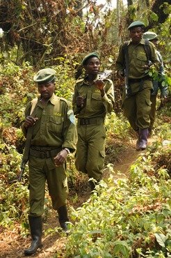 Park guards on patrol in Kahuzi-Biega National Park.