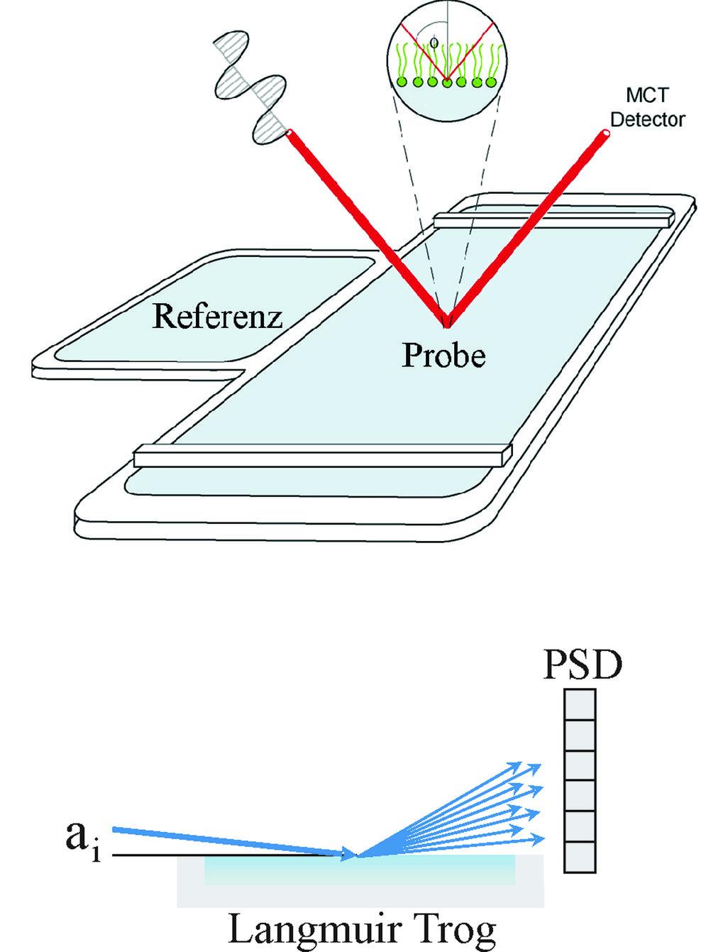 Oben: Aufbau eines Infrarot-Reflexions-Absorptions-Spektroskopie (IRRAS)-Experimentes. Die Probe (adsorbierter Film löslicher amphiphiler Moleküle ode