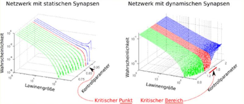 Vergleich zwischen statischen und dynamischen Synapsen. Dargestellt ist die Verteilung der Lawinengrößen in Abhängigkeit vom Kontrollparameter (maxima