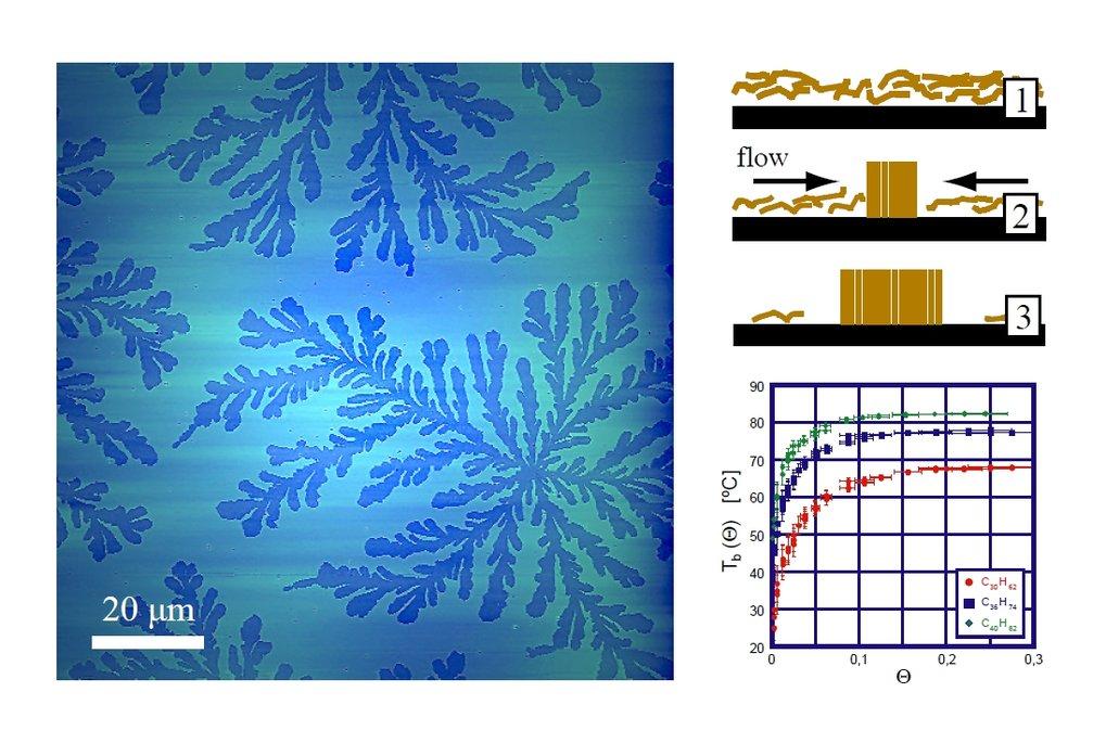 Abb. 1: Organische EisblumenMonschichtdomänen aus langkettigen Alkanen (C30H62 an der  SiO2/Grenzfläche, mikroskopische Aufnahme). Das Schema oben rec
