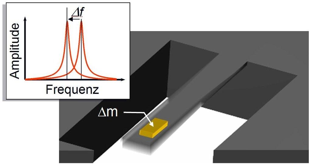 <strong>Abb. 1: </strong>Nanomechanische Resonatoren erlauben die präzise Messung kleinster Massen. Dazu wird ein mikromechanischer Biegebalken, welc