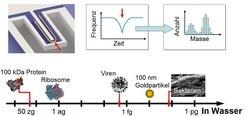 <strong>Abb. 2:</strong> Die Masse biologischer Objekte kann mithilfe nanofluidischer Resonatoren gemessen werden. Unten: Skala der effektiven Masse
