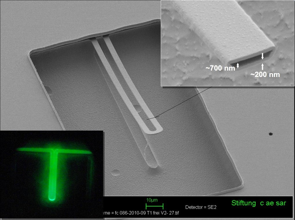 <strong>Abb. 3: </strong>Nanofluidische Resonatoren aus Siliziumoxid sind optisch transparent und ermöglichen korrelative Messungen von Masse und Flu