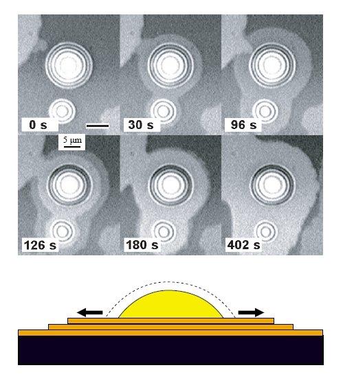 Abb. 2: Alkanterrassen Seitliches Wachstum von Alkanmonoschicht-Terrassen aus unterkühlten Alkantropfen (SiO2/Luft-Grenzfläche, optische Mikroskopie).