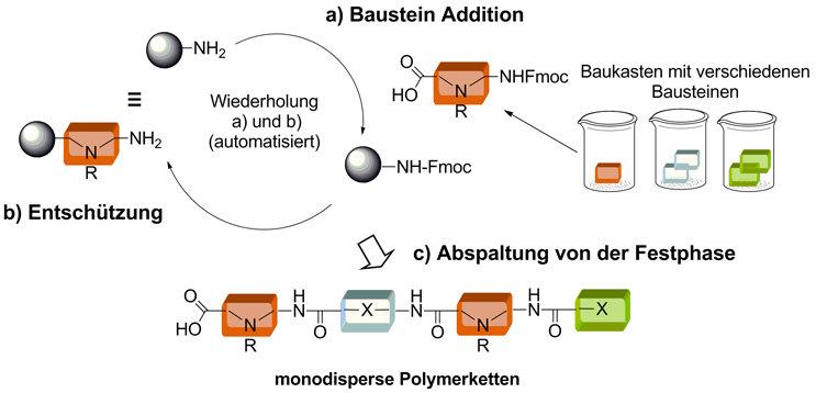 Bild 3: Die Festphasensynthese von monodispersen Polymeren durch den schrittweisen Aufbau aus einzelnen Bausteinen
