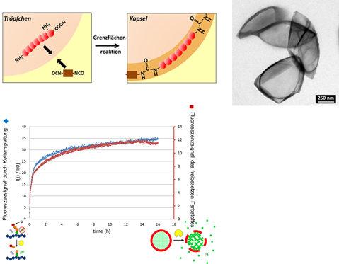 <strong>Abb. 4:</strong> Oben links: Herstellung von enzymspaltbaren Nanokapseln. Oben rechts: Elektronenmikroskopisches Bild der Kapseln. Unten: Öffn