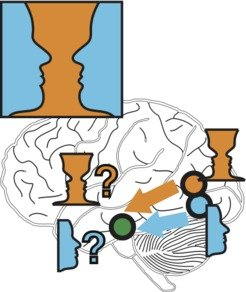Images or cup? Due to the rapid reorganisation of networks in the brain we perceive different elements of the image.