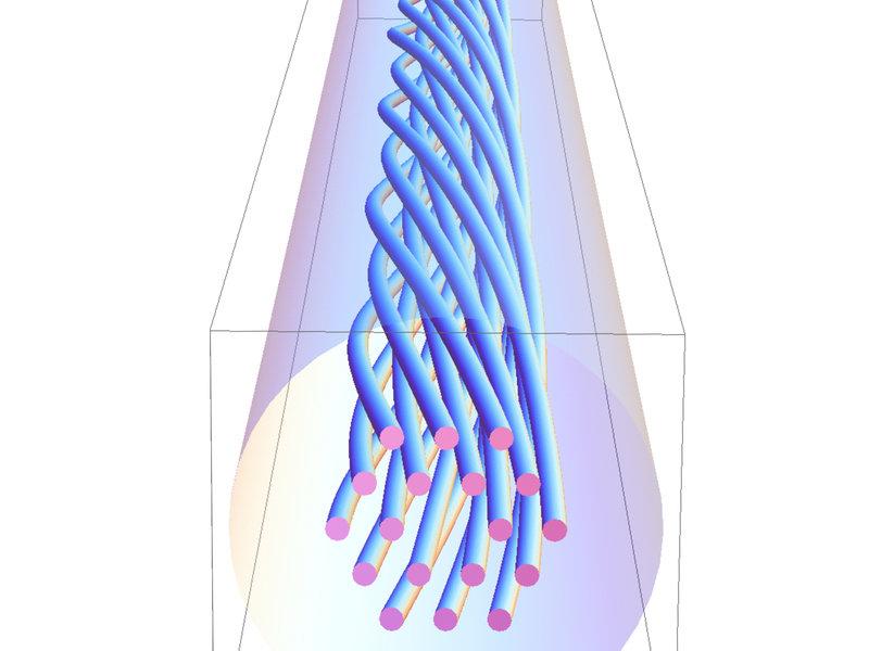 © Wong et al., Science 2012, doi: 10.1126/science.1223824