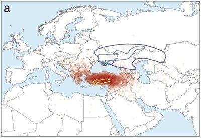 Abgeleiteten geografischen ursprung der indogermanischen sprachfamilie