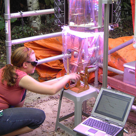 Open-air lab in the Amazon rainforest