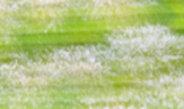 Teaser image horizontal 1293749292