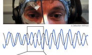 Brain waves make waves