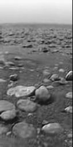 "Titan's surface after landing: the picture is taken from a height of about 40 centimetres. The biggest ""stones"" are about 15 centimetres in diameter."