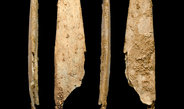 Standardized and specialized bone tools made by Neandertals are still in use today