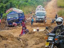 Das Projekt war für die Forscher eine große logistische Herausforderung, denn Liberias Infrastruktur ist während des Bürgerkriegs fast komplett zerstört worden.