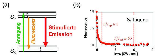 Fluoreszenzlöschung durch stimulierte Emission. (a) Energieschema eines Fluoreszenzmoleküls: Licht geeigneter Wellenlänge kann den ansonsten fluoreszi