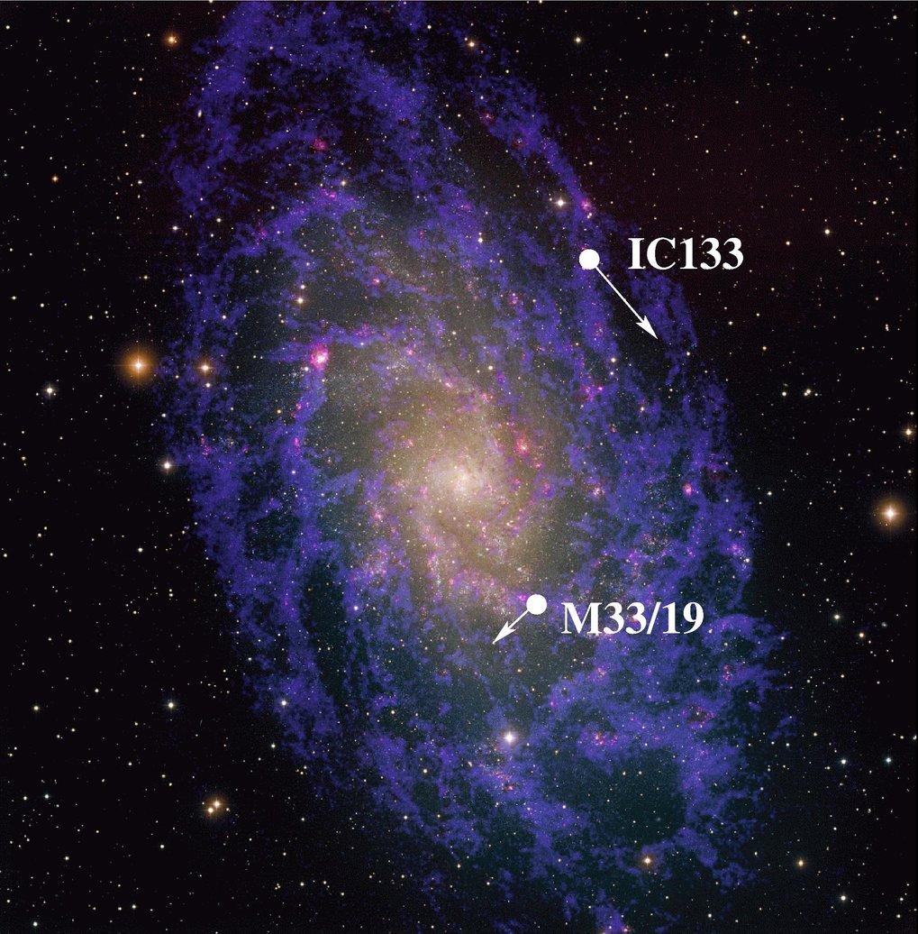 Die Dreiecksgalaxie M33 mit den Positionen und Bewegungen der beobachteten Wasserdampfwolken.