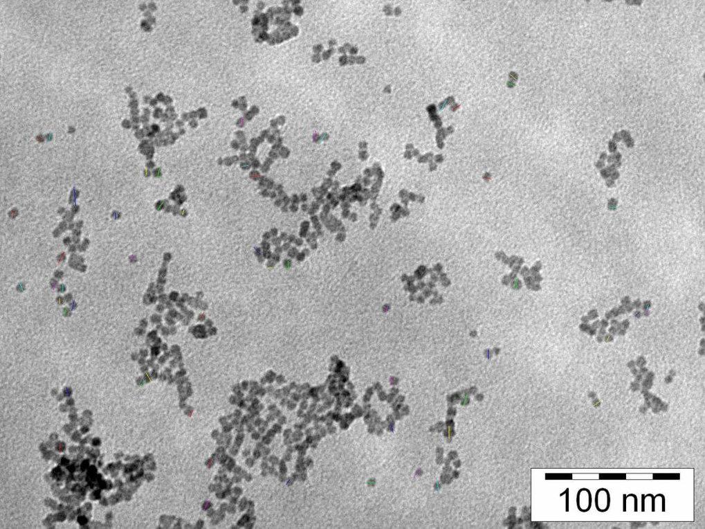 TEM-Bild von in Mikroemulsionen mit unterschiedlichen Anfangskonzentrationen der Reaktanden gefällten Bariumsulfatpartikeln: 0,1 M K<sub>2</sub>SO<sub