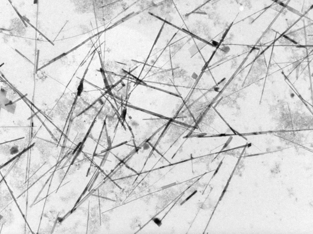 TEM-Bild von in einer Mikroemulsion entstandenen Calciumcarbonatnadeln nach einer Versuchsdauer von 24 Stunden [2]