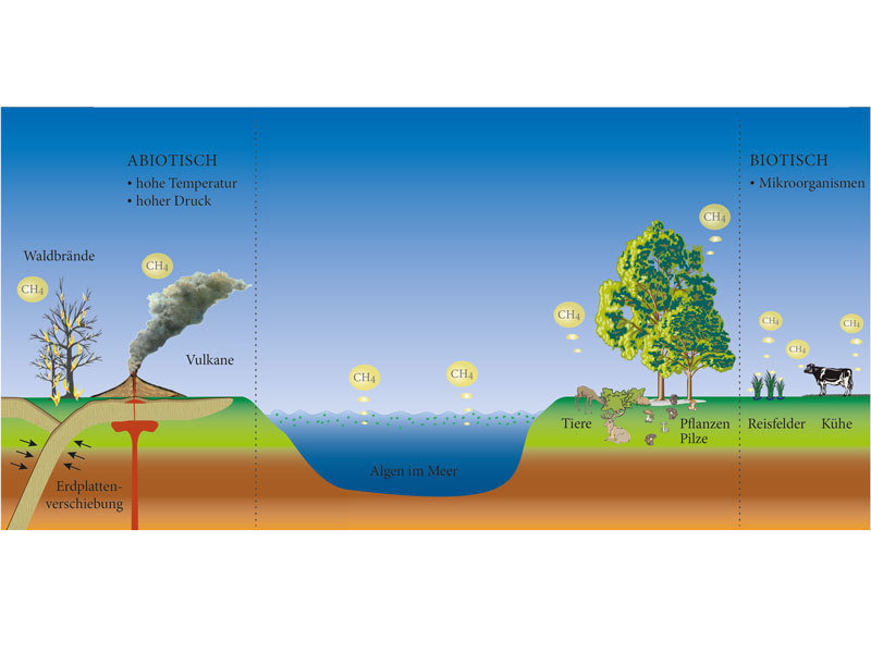 Do Natural Gas Plants Emit Methane