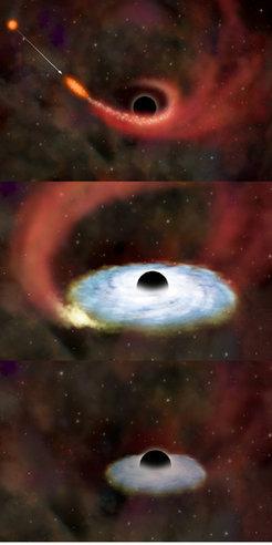 Die Sequenz zeigt, wie ein Stern durch die Gezeitenwirkung eines Schwarzen Loches zerrissen wird (links). Ein Teil der stellaren Überreste sammelt sic