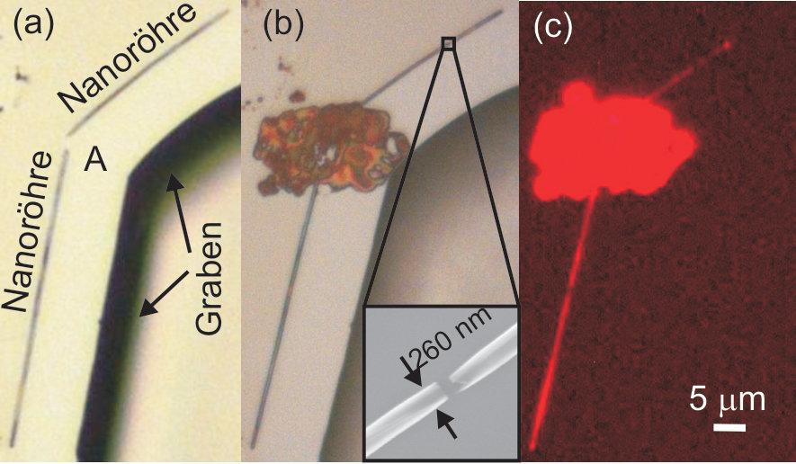 (a) Lichtmikroskopie-Aufnahme zweier Nanoröhren, die von einem lithografisch definierten Graben weggerollt sind. (b) Ein Farbstofftropfen wurde über d