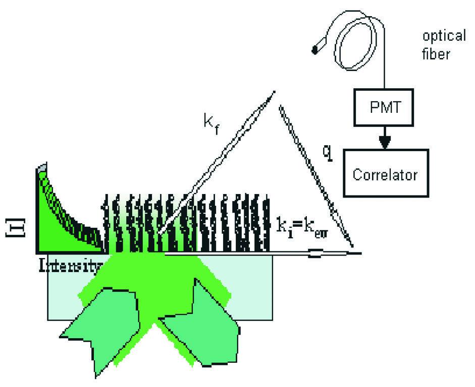 Schema des Aufbaus für die dynamische Lichtstreuung mit evaneszenten Wellen mit dem Laserstrahl in Totalreflexion. Das evaneszente Feld durchdringt di