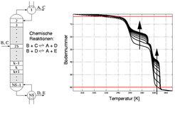 Wandernde Temperaturfronten in einer Reaktivdestillationskolonne nach einer Erhöhung der Verdampferleistung. Die Pfeile zeigen die Wanderungsrichtung