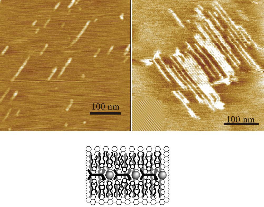 Auf der Oberfläche von Graphit bildet der PAC bei der Adsorption mit langkettigen Alkanen (z. B. C32H66 ) in vorhersehbarer Weise pfeilgerade Nanostru
