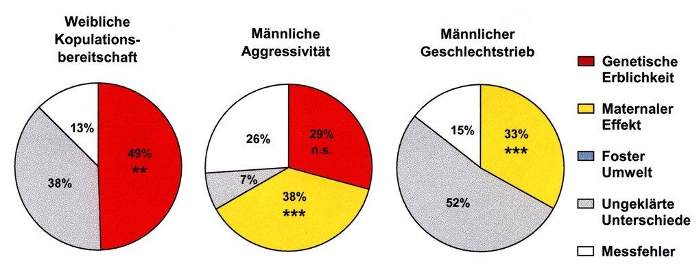 Variation im Sexualverhalten der ersten Zuchtgeneration (ca. 200 Individuen), aufgesplittet nach den Ursachen. Genetische Erblichkeit und maternale (m