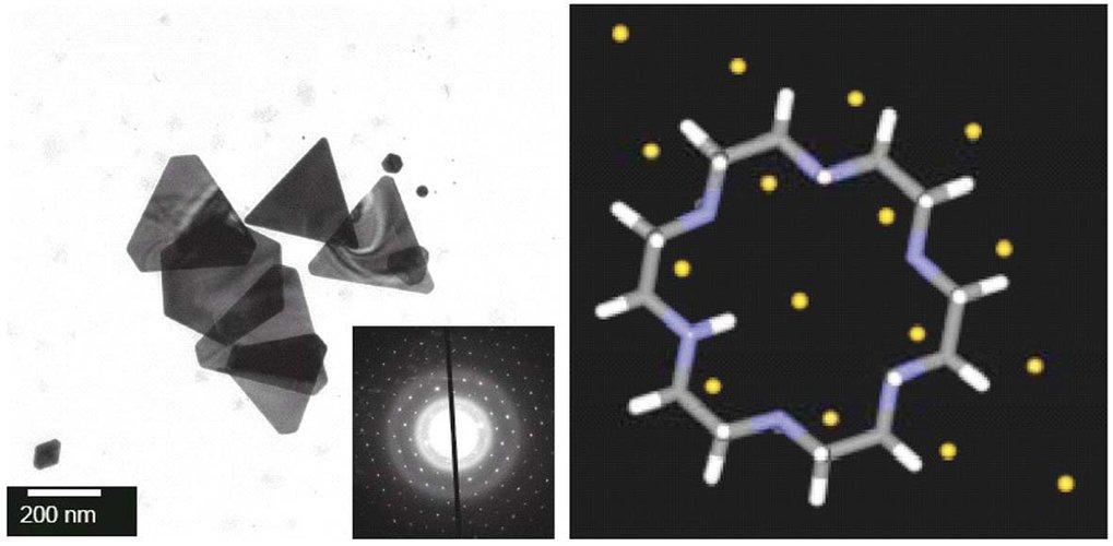 Links: Transmissionselektronenmikroskopische Aufnahme von Goldplättchen, welche in Gegenwart eines strukturdirigierenden Blockcopolymers aus Polyethyl