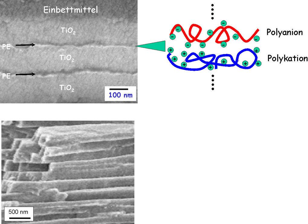 Bioinspirierte Materialien: Oben: Mehrschichtsystem aus TiO<sub>2</sub> und Polyelektrolyten (PE). Die organischen Polyelektrolyt-Schichten wurden nac